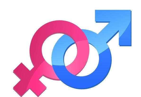 Gender Roles In Fashion Industry Site Edu